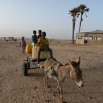 les enfants participent à la corvée d'eau